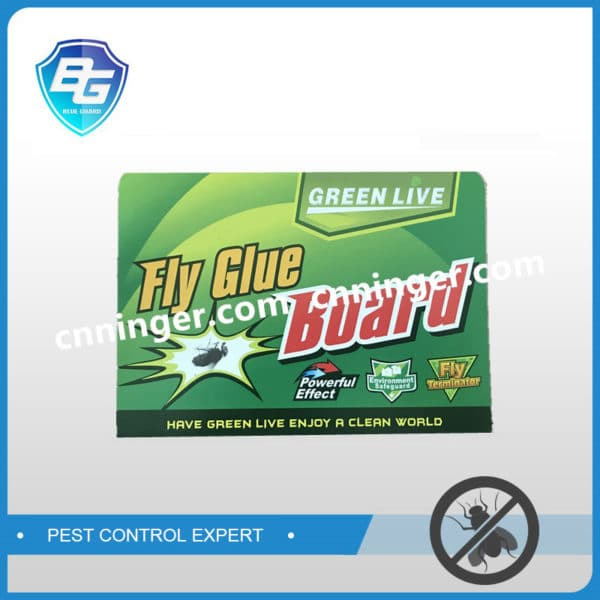 fly glue paper