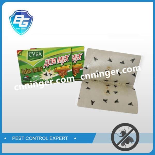 fly glue trap