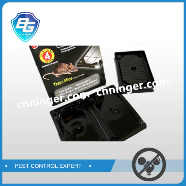 mouse glue tray
