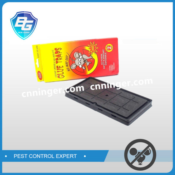 mouse glue tray cold temperature