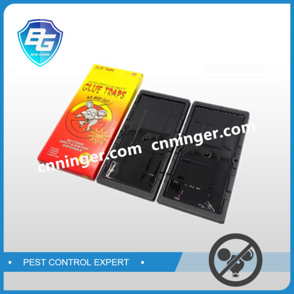 plastic mouse glue trap