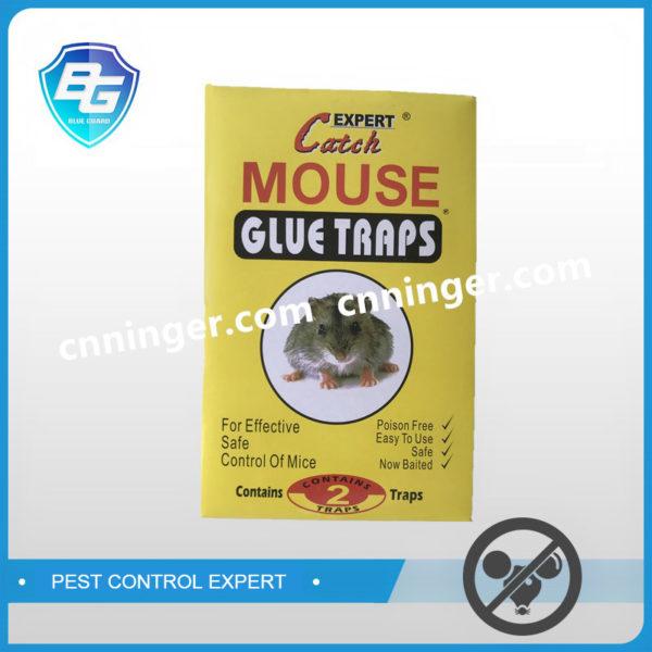 mouse glue traps factory