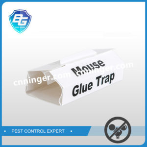 mouse glue trap with release paper