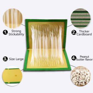 peanut smell mouse glue board