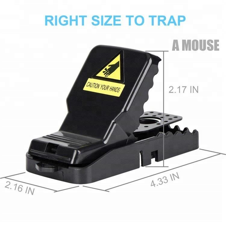 plastic-mouse-trap
