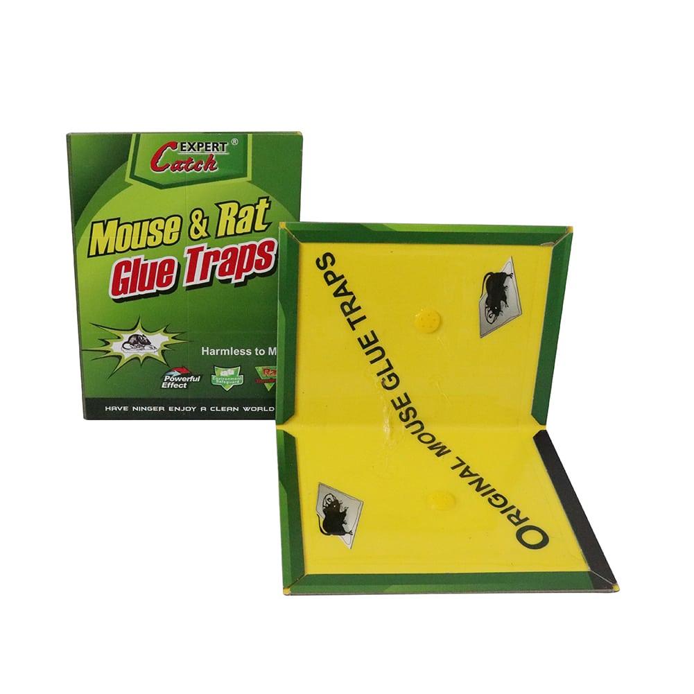 mouse glue book